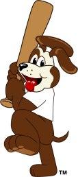 Dog01C037LR